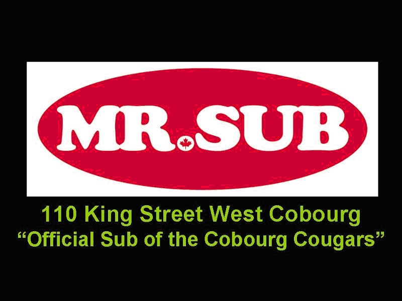 Mr. Sub